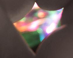 disco-dimple2-website-tn